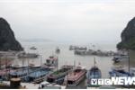 Áp thấp nhiệt đới giật cấp 8 tiến sát bờ, Quảng Ninh ra lệnh cấm biển