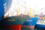 Tàu vỏ thép chục tỷ 'đắp chiếu' ở Bình Định: 'Nếu có vi phạm hình sự phải xử lý nghiêm'