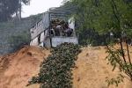 Video: Xót xa nhìn cảnh nông dân đổ đi cả xe ô tô dứa chín do Trung Quốc ngừng thu mua