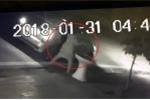 Clip: Phụ nữ đi ô tô trộm hoa của nhà dân lúc rạng sáng