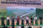 Vinamilk khánh thành Trang trại số 1 thuộc Tổ hợp trang trại bò sữa công nghệ cao Vinamilk Thanh Hóa