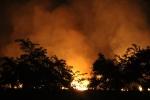 Lửa cháy ngùn ngụt bao trùm rừng tràm TP.HCM