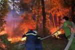 Không sử dụng máy bay chữa cháy rừng ở Hà Tĩnh: Cục Kiểm lâm lý giải