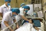 Cứu sống bé trai 14 tuổi bị rắn độc cắn nguy kịch ở Quảng Ninh