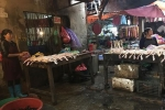 Hà Nội phát hiện thịt lợn, thịt gà nhiễm khuẩn Salmonella