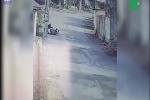 Cả làng bỏ chạy vì bị khỉ dữ tấn công