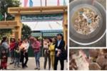 Trẻ ăn phải 'thịt bẩn, gà thối' ở trường mầm non Bắc Ninh: Yêu cầu công an điều tra
