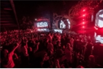 7 người chết do sốc ma túy tại lễ hội âm nhạc ở Hà Nội: Công an thông tin chính thức
