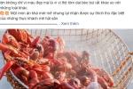 Bất chấp lệnh cấm, tôm hùm đất vẫn được rao bán tràn lan trên mạng