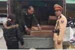Bị kiểm tra, nữ tài xế chở gỗ lậu xin xỏ CSGT Hà Nội bỏ qua