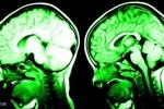 7 cách khiến não bộ hạnh phúc hơn