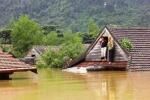 Ảnh: Người dân Quảng Bình trèo lên nóc nhà tránh lũ lụt lịch sử