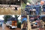 Cập nhật tình hình mưa lũ lịch sử: Hơn 90 người chết và mất tích