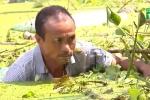 'Rốn ngập' ở Hà Nội: Biển rác bủa vây, 700 người có nguy cơ nhiễm bệnh