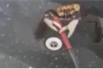 Video: Bị làm thịt, cua cắp dao, tấn công chống trả đầu bếp
