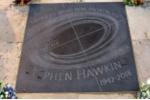 Giọng nói của Stephen Hawking được truyền đến hố đen cách 3.500 năm ánh sáng