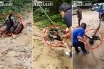 Clip: Dân làng hiệp lực cứu chó bị trăn siết chặt