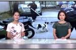 Tìm hiểu về những người đàn ông thản nhiên bắt chó trên đường phố TP.HCM
