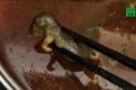 Tự bỏ chuột chết vào nồi lẩu, đòi nhà hàng bồi thường 17 tỷ đồng