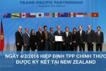 'TPP không có Mỹ': Việt Nam vẫn có nhiều lợi ích