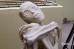 Phân tích hàng loạt xác ướp kỳ dị nghi là người ngoài hành tinh ở Peru