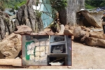 2 két sắt trong sào huyệt của trùm ma túy ở Lóng Luông có gì?