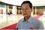 Đại biểu Quốc hội: 'Điều tra bổ nhiệm ông Trịnh Xuân Thanh không chỉ dừng ở đây'