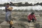 Ảnh: Quảng Nam dựng 'tường thành' ngăn sóng biển tấn công đất liền