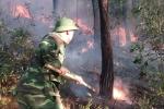 Cháy rừng trên diện rộng, Huế di dời khẩn cấp nhiều hộ dân