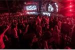 Khởi tố vụ án 7 người chết tại lễ hội âm nhạc ở Công viên nước Hồ Tây