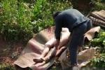 Hủ tục kinh hoàng khiến xác phụ nữ trở thành món hời của lũ trộm mộ