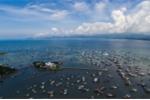 18.000 ngàn tàu cá Trung Quốc chuẩn bị tràn xuống Biển Đông