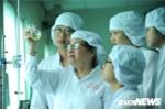 Nữ nhà khoa học dành 30 năm tâm huyết với cây thuốc Việt