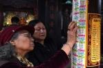 Thứ trưởng Văn hóa đề nghị Giáo hội Phật giáo cấm dâng sao giải hạn