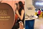 Thanh tra Chính phủ kiến nghị khởi tố vụ Mobifone mua AVG