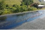 Nắng nóng kỷ lục tại Anh: Đường nhựa nóng chảy, chó chết vì sốc nhiệt