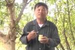 Cách phân biệt sữa ong chúa sạch