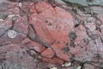Phát hiện hóa thạch thú vị khẳng định sự sống từ vài tỷ năm trước