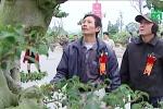 Video: Cận cảnh hàng ngàn siêu cây cảnh hội tụ tại Thủ đô