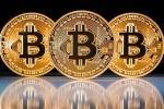 Nhập 100  máy 'đào Bitcoin' Trung Quốc nhưng mắc kẹt vì quy định