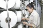Nhà máy Xơ sợi Đình Vũ đã xuất bán 149 tấn sợi Filament