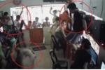Clip: 2 chú chó đại chiến dữ dội trong quán net, khách hoảng sợ trèo cả lên cửa sổ