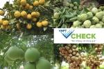 VNPT Check: Nang tam nong san Viet hinh anh 1
