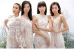 Hằng Nguyễn, Phan Linh Top Model đọ vẻ quyến rũ trong trang phục xuyên thấu