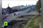Kỳ lạ 2 chú chó chuyên hóng tai nạn tại giao lộ tử thần