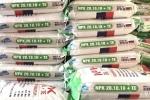 Hải quan siết chặt quản lý phân bón nhập khẩu ngăn ngừa trốn thuế