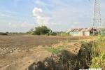 Chính phủ yêu cầu điều chỉnh quy hoạch sử dụng đất tỉnh Bà Rịa - Vũng Tàu