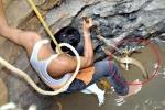 Clip: Đu dây xuống giếng sâu, giải cứu rắn hổ mang dài gần 2m