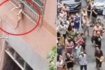 Clip sốc: Bé trai kẹt đầu vào 'chuồng cọp', lơ lửng trên tầng 3 chung cư