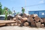 Khai trừ Đảng 2 cán bộ kiểm lâm ở Đắk Lắk